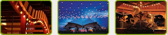 21' - 48' - 100' Commercial Grade Linear Light String Strands - Commercial & Festival Indoor/Outdoor Lighting