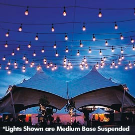 100 Ft Commercial Outdoor String Lights Drop Socket