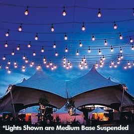 330\' Commercial Linear Light String Strand - Intermediate Base ...