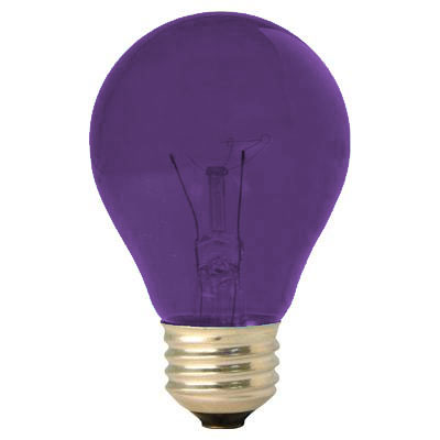 GE Lighting [22731] 25W A19 Decorative Party Light Bulb - Purple