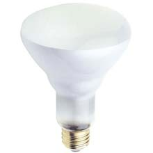 BR30 65W Frosted Reflector Light Bulb