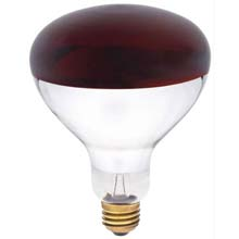 R40 250W Red Heat Light Bulb