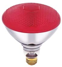 Westinghouse PAR38 Red Floodlight Bulb - 100W