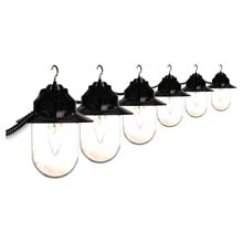 Clear Savannah Globe String Lights - Black Cord - Set of 6 PP-6S04-02507-SSH