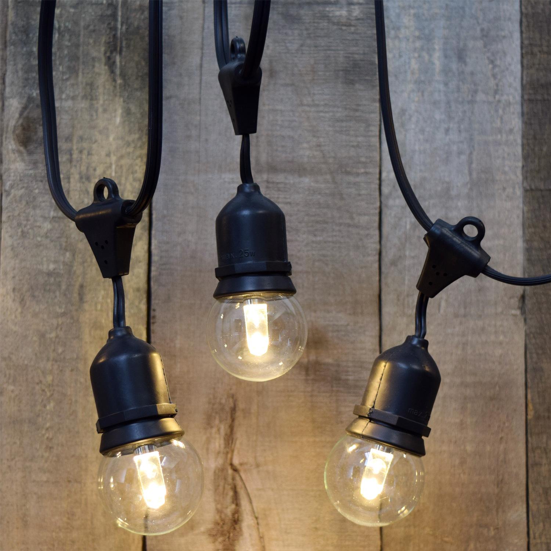 designer series cafe string lights 10 g50 led globe light bulbs 21 39 black ais 21bk10 psg50. Black Bedroom Furniture Sets. Home Design Ideas