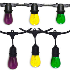 Mardi Gras All-In-One String Light Kits