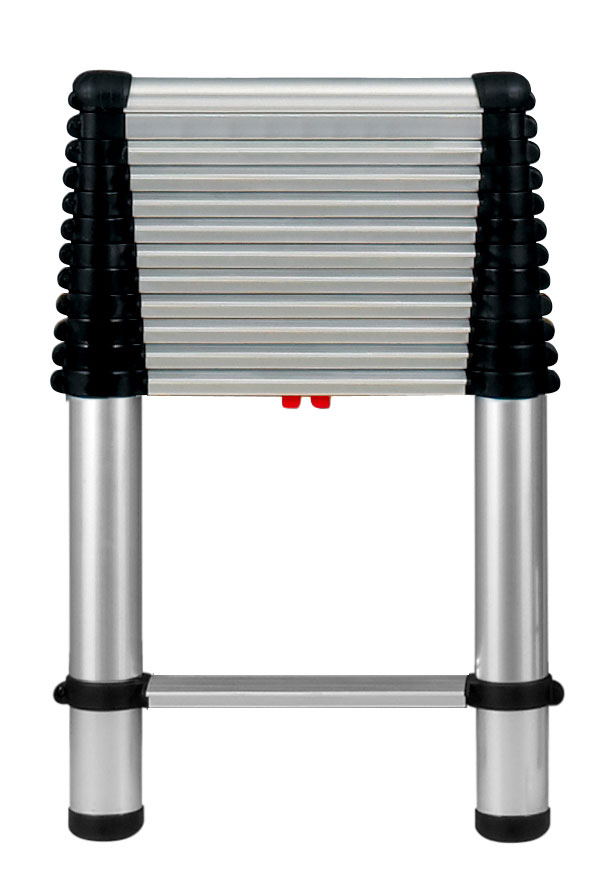Telesteps 16' Professional Extension Ladder