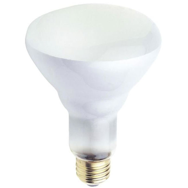 65 Watt BR30 Incandescent Floodlight Bulb