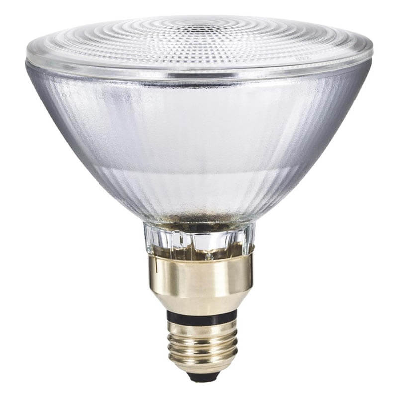 90 Watt Halogen Floodlight Bulb