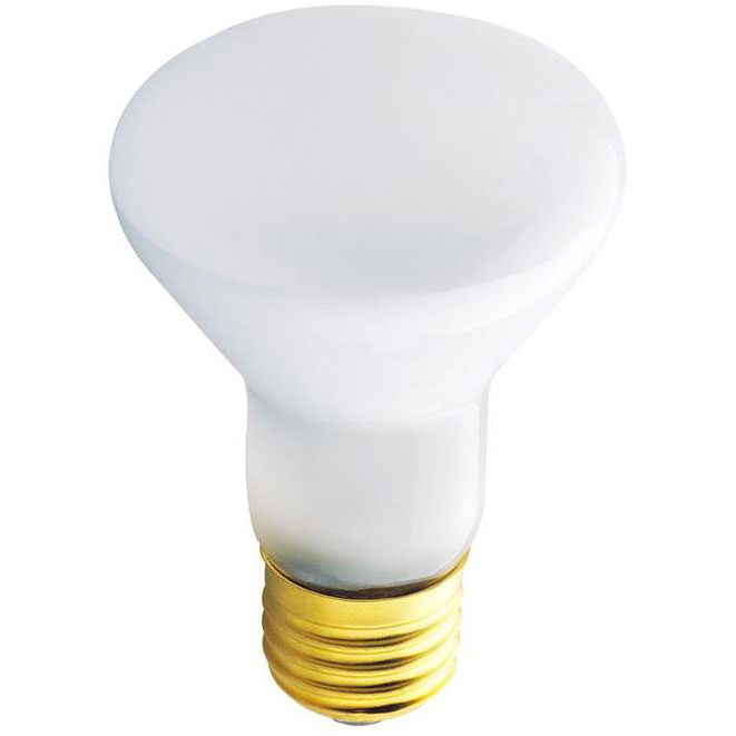 45 Watt R20 Reflector Floddlight Bulb