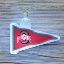 NCAA Ohio State Buckeyes LED Pennant String Lights - Battery Operated TP-NCAA/OHIO