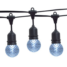 21' Cool White LED Globe Light Strand Kit - Black Wire
