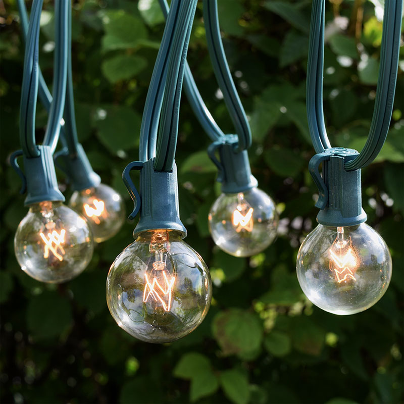 Clear Commercial Grade Globe String Lights
