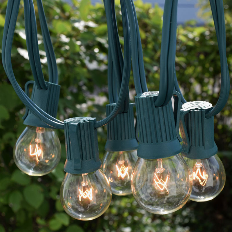 25' C9 Clear Globe String Light Strand