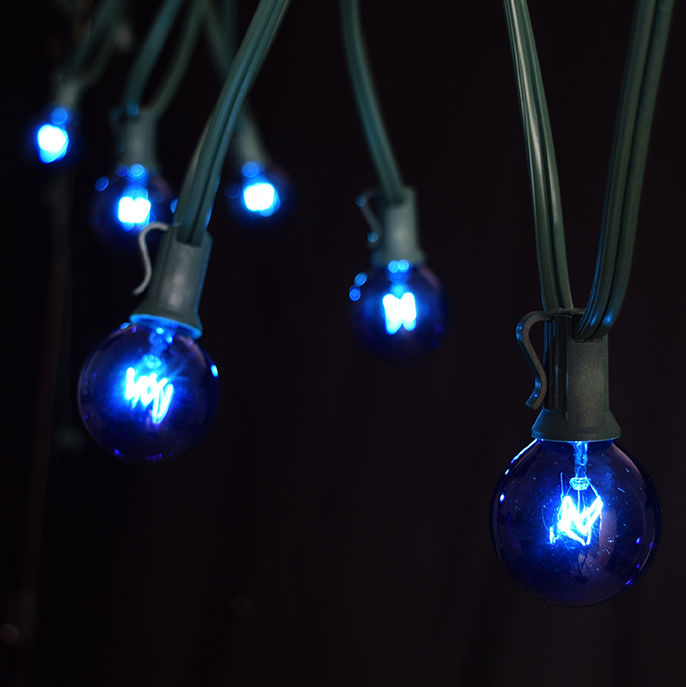 String Lights Blue : 50 Foot Green Wire Blue Globe Light String