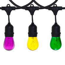Mardi Gras Festive String Light Kit - 100 ft Black Suspended Strand