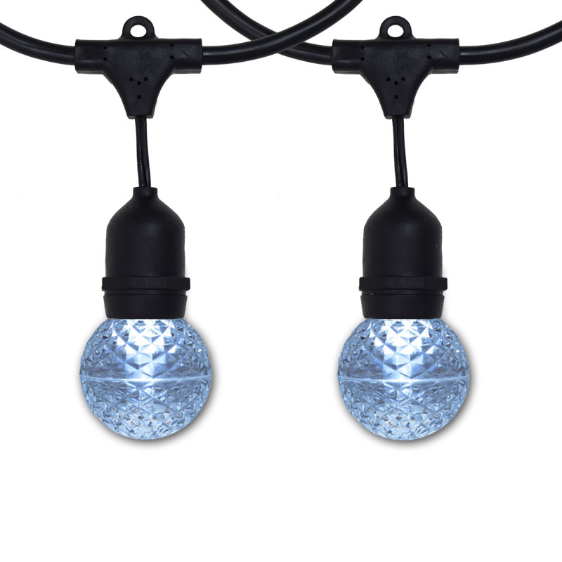 100' G50 Globe Commercial Suspended Light Strand Kit - Cool White LED Bulbs