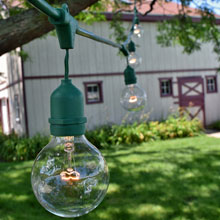 48' Green Suspended Clear Globe String Light Kit