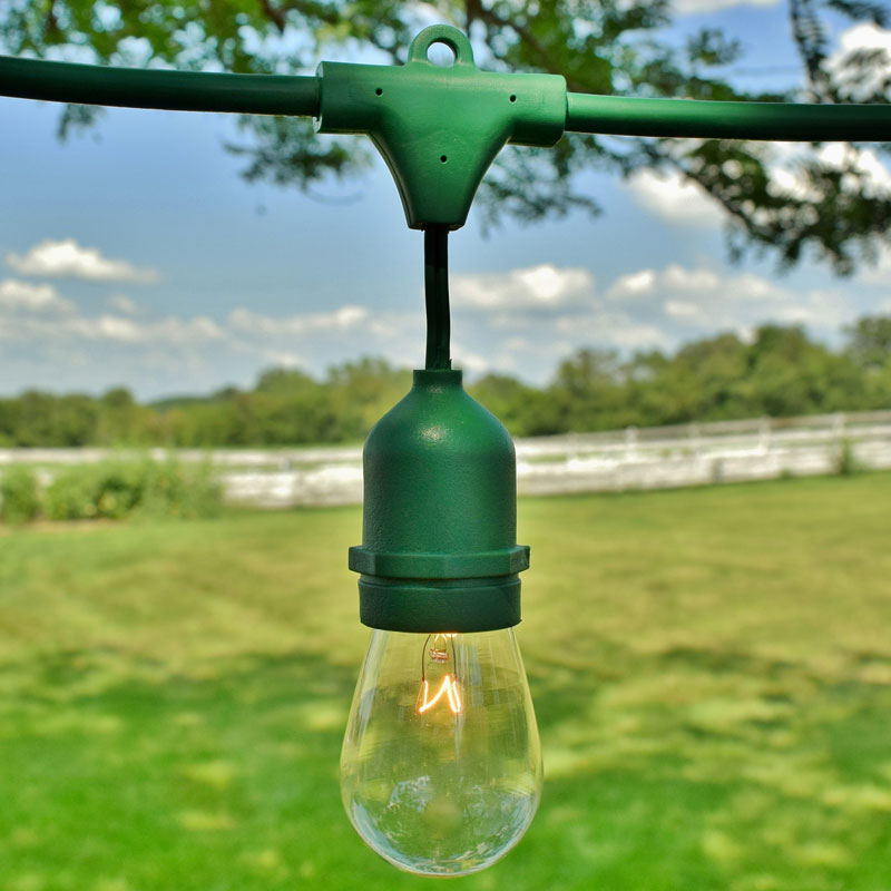 48' Commercial Light Strand Kit - S14 Clear Glass Bulbs - Green Suspended