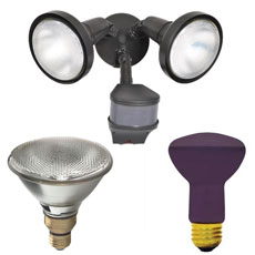 Flood Lights & Bulbs