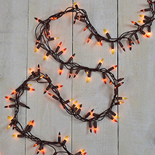 Fall Harvest Cluster Party String Light Set - 150 Lights                     DR-620298