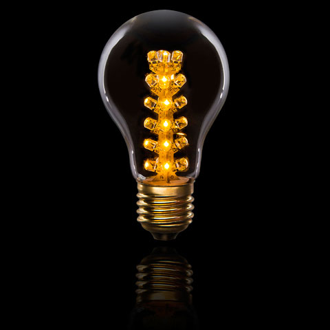 LED Antique Edison Light Bulb