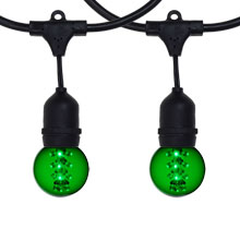 48' Green LED Designer Globe Light Kit - Black Suspended