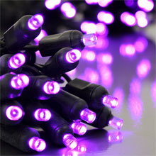 Purple LED Outdoor String Lights