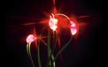 LED Battery Operated Ultra Thin Wire String Light Strand - 18 Red Lights - 725041