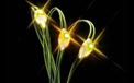 LED Battery Operated Ultra Thin Wire String Light Strand - 18 Amber/Yellow Lights - 725042