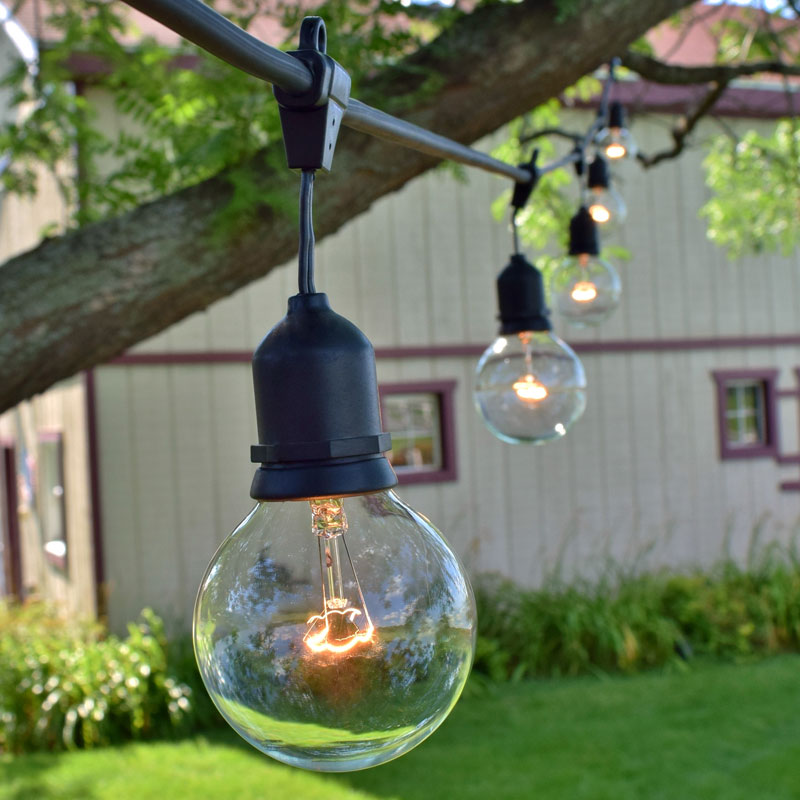 Globe String Lights Kit : 48 Commercial Clear Globe String Light Kit - Black Suspended