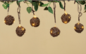 Grapevine Spheres - Warm White LED Party Lights - 10 Spheres - GC2116960