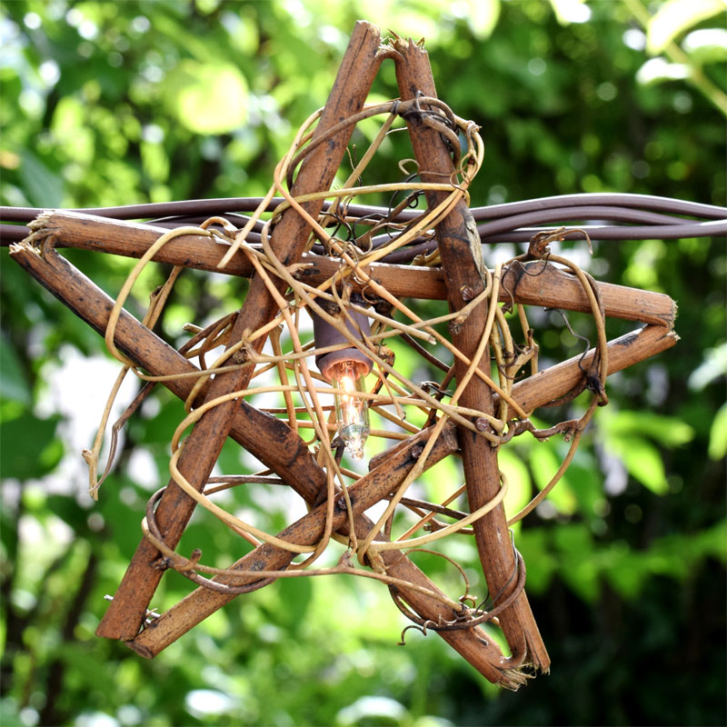Rustic Vine Star String Light Set - 10 Lights
