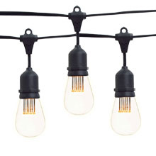 21' Vintage LED Suspended Medium Base w/ Bulbs