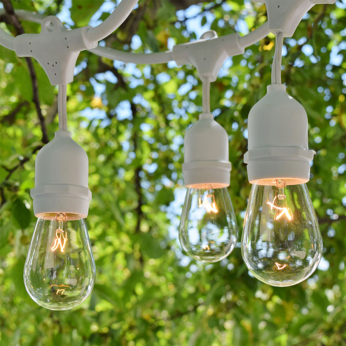 Delightful 48u0027 Outdoor String Lights Med. Base Suspended White   HD Pro Series