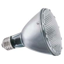 48 Watt PAR30 Halogen Floodlight Bulb