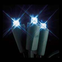 Flexchange White LED Battery Operated String Lights