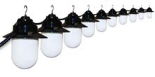 10 Globe White Savannah String Lights - Black Housing