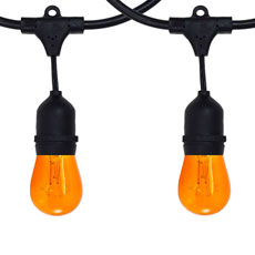 Halloween All-In-One String Light Kits
