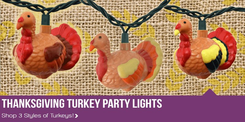 Turkey Party String Lights : Party & String Lights for Holidays - Commercial Globe String Lights - Outdoor & LED