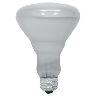 65W BR40 Indoor Floodlight Reflector Bulb