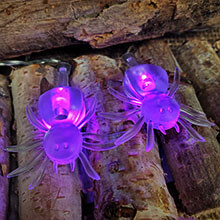 10 Clear Spider Purple Lights - Battery Operated