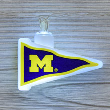 NCAA Michigan Wolverines LED Pennant String Lights - Battery Operated TP-NCAA/MICH