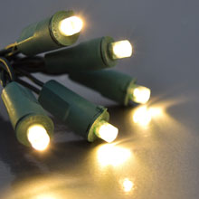 20L Flexchange LED Battery Operated String Lights - Warm White/Green
