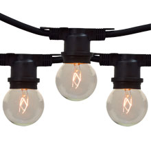 100' Clear Globe Commercial Light Strand Kit - Non-Suspended
