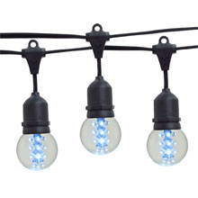 21' Cool White Designer LED Globe Light Strand Kit - Black Wire