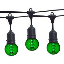 21' Green Designer LED Globe Light Strand Kit - Black Wire