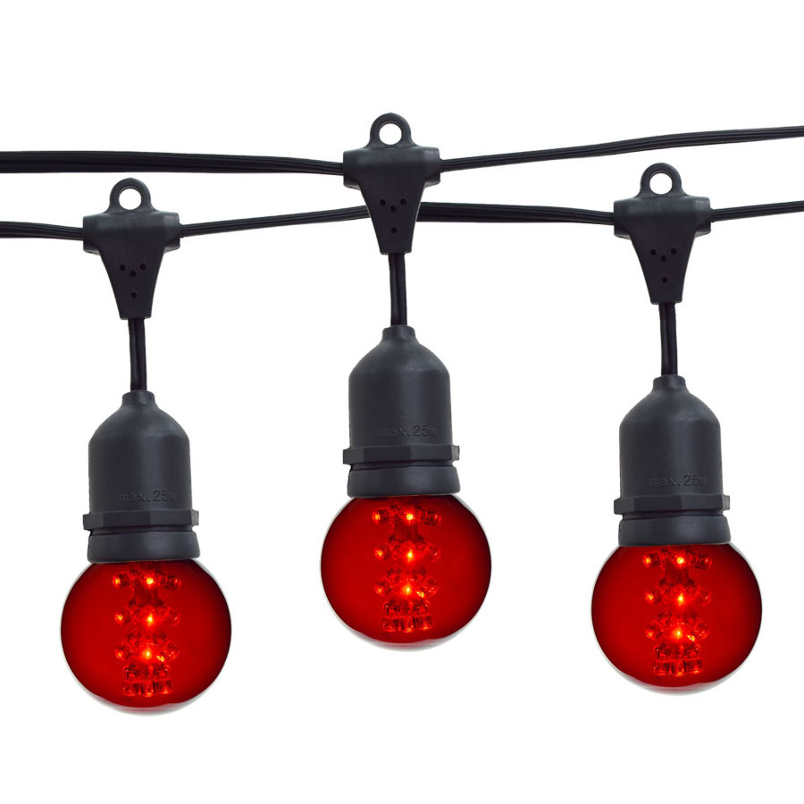 21' Red Designer LED Globe Light Strand Kit - Black Wire