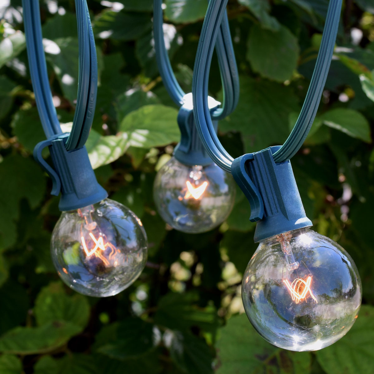 50 5w c7 clear globe string lights