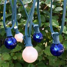 25' C7 Blue/White Globe String Light Strand